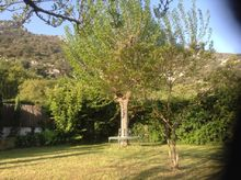 View from the pool to the garden and the Luberon